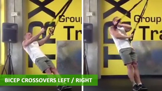 TRX Arm Exercises - Bicep Crossover Left/Right