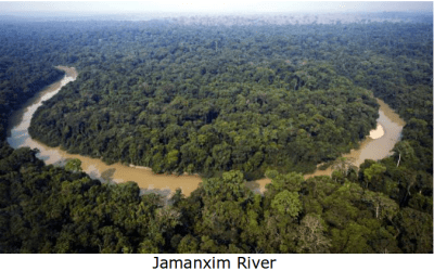 Amazon Rainforest Under Siege by Michel Temur, Corrupt Installed President of Brazil