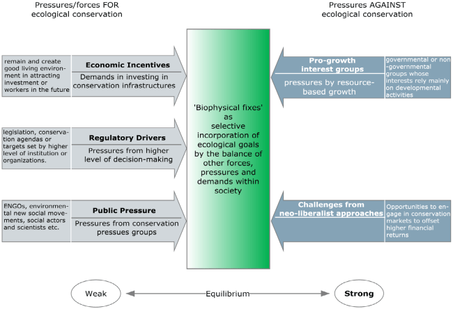 Figure 2. Conceptualizing the decision-making rationalities for the designation of ecological spaces.