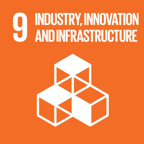 United Nations Sustainable Development Goal 09