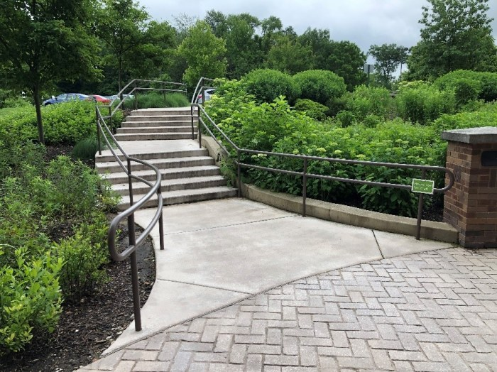Stairs lead up to a parking lot through a densely packed area of shrubs and grasses.