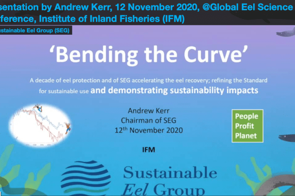 """Bending the Curve"", Andrew Kerr @Global Eel Science Conference 2020"