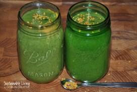 Grön supersmoothie med vetegräs och bipollen