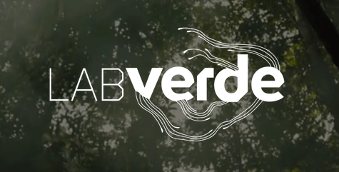 Open Call: LABVERDE Art Immersion in the Amazon