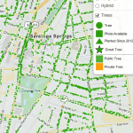 Click here to view our interactive tree inventory of more than 4800 trees, updated 2014.