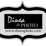 dinea_logo_gray