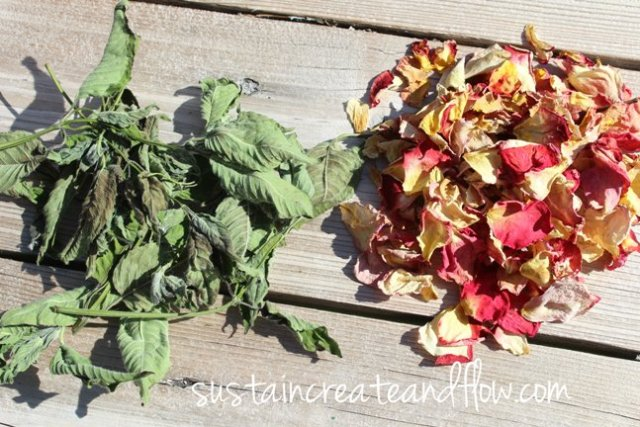 rose-and-bee-balm-dried