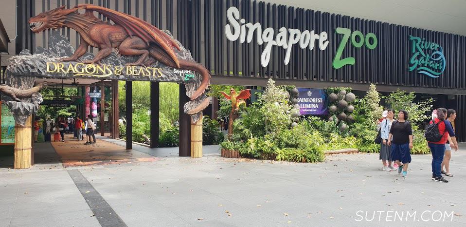 เทียวสวนสัตว์สิงคโปร์ Singapore Zoo , River Safari ใน 1 วัน