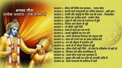 Photo of भगवद गीता, प्रत्येक अध्याय एक वाक्य में