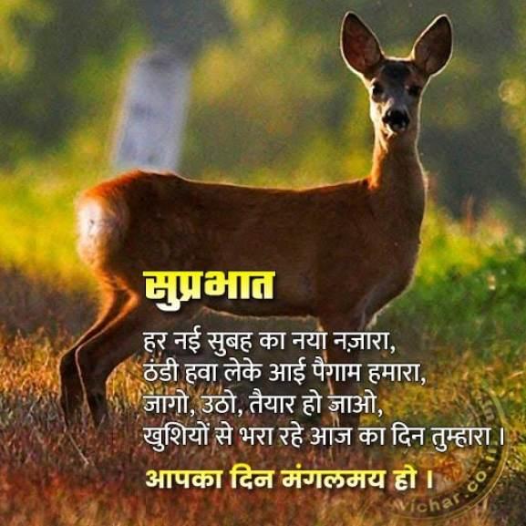 good morning messages in Hindi - suprabhat suvichar