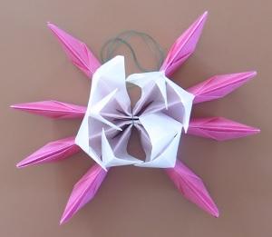 Lotus bloem 2de deel van binnen laag omhoog
