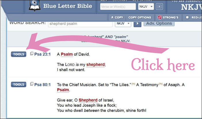 Tools-Psalm-23-BlueLetterBible.png