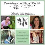 Tuesdays with a twist link party