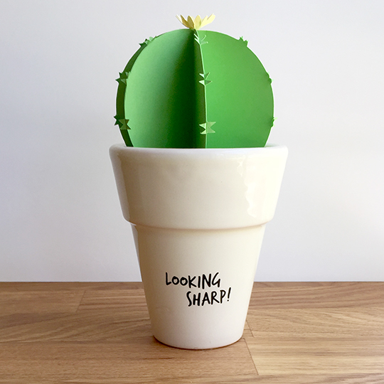 punny saying for a paper cactus