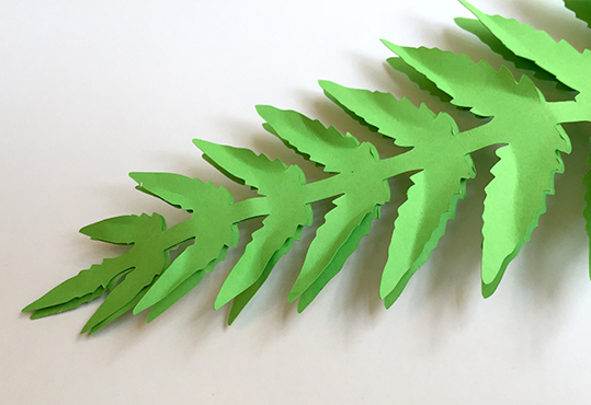 Paper Fern fronds for the faux fern
