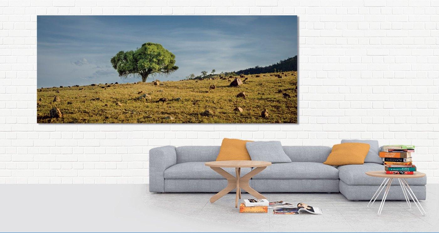 wanddecoratie, muur, foto, leuk, iets, ideeen, canvas, werk, print, hout, aluminium, digibond, woonkamer, kunst, online, shop, fotografie, Sven, Wildschut,