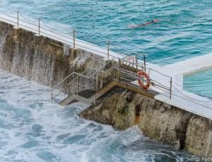 Zelfs in de Australische 'winter', trekt deze Iceberg toch een paar baantjes in de Bondi Baths. Dit meer dan 100 jaar oude zwembad, ooit bedoelt om de lifeguards fit te houden in de winter, is de bekendste zwemclub van Australië.