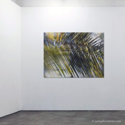 evergreen_rooms7