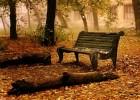 Stigla je jesen 2