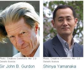 Nobelova nagrada 2012 - medicina 2