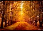 Jesen [22.09.2013] 5