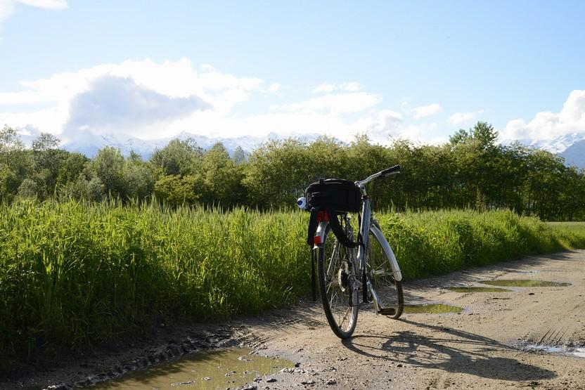 Campaign Bike Fields Summer