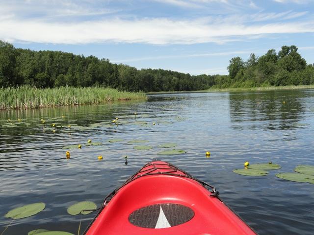 Kayaking in the narrows