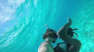 Sailing the world on 26 feet sailboat | SailingNala  Intro