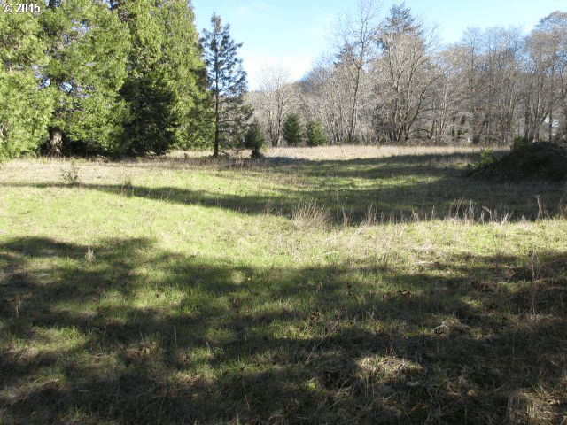 0 Upper Cow Creek Rd