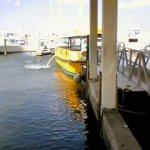 7264 – anchors aweigh