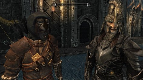 Two cat man characters from skyrim.