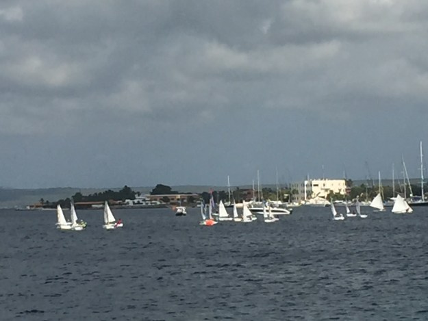 Bonaire Regatta.