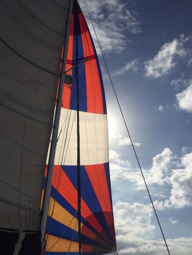Columbia Passage with Small Spinnaker