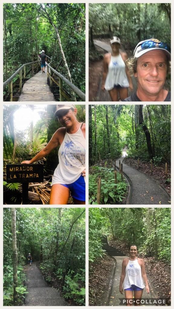 Hiking Trails at Manuel Antonio Park