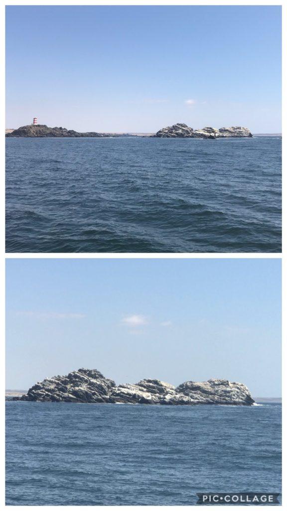 Rocky Chilean Coastline