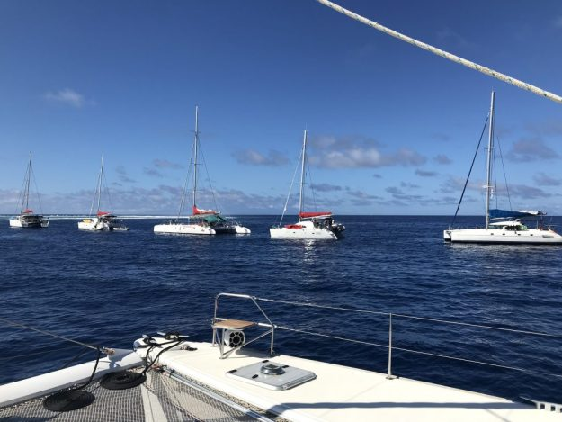 5 Charter boats on 1 mooring ball