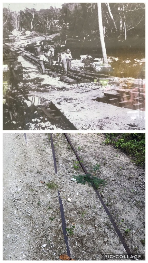 Tracks from the 1950s and today