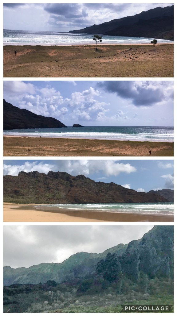 Beautiful beach ridges