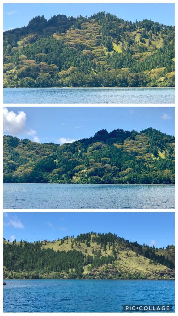 Taravai Hillside