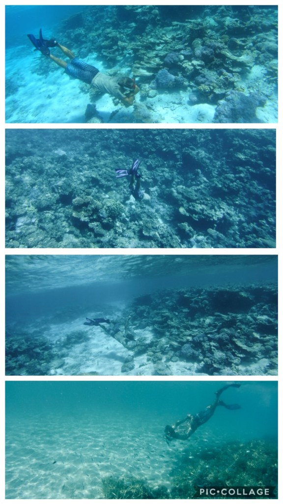 Snorkeling with some fishie