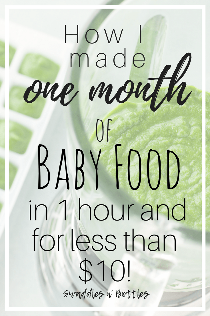 How to Make One Month of Baby Food in One Hour and for Less Than $10