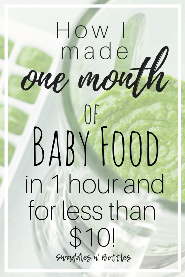 One Months Supply Baby Food- 1 Hour and less than $10!