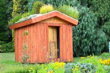 Royal Hobart Botanical Gardens