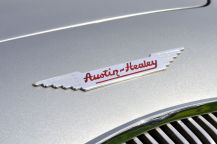 Very nice badge - Austin Healey