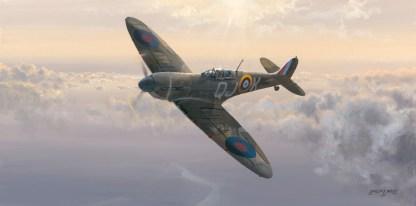 Evening Glory Spitfire