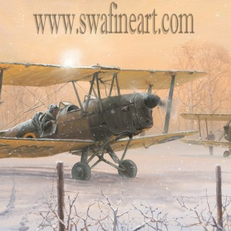 Those Were The Days - Tiger Moth