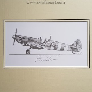 Spitfire Philip West original