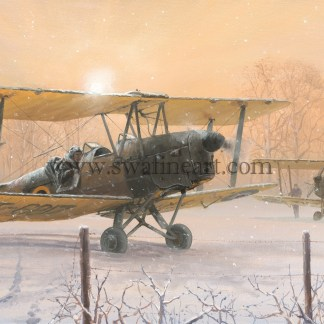 Tiger Moth Those Were the Days Christmas cards