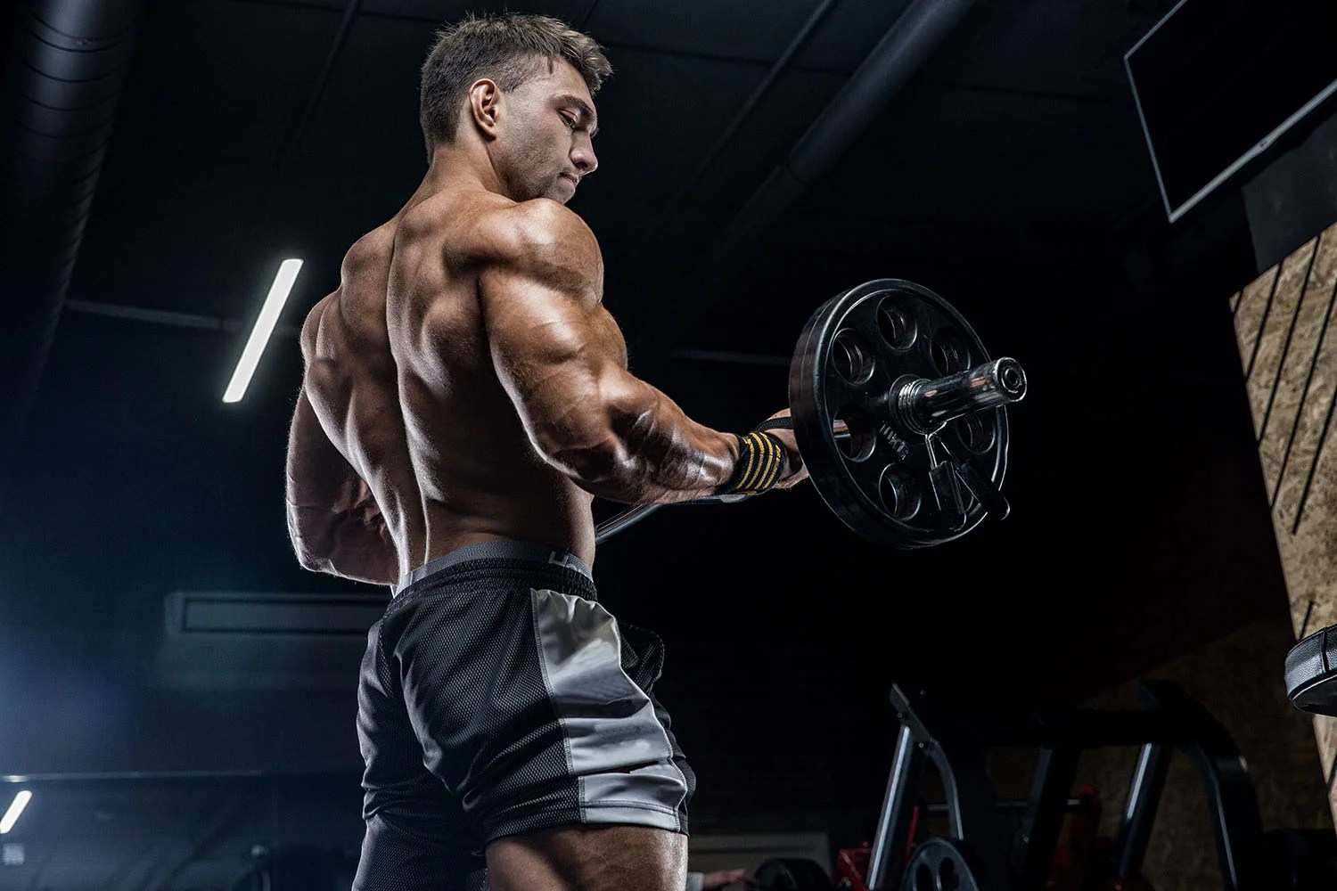 Best Workouts To Increase Muscle Mass Swagger Magazine