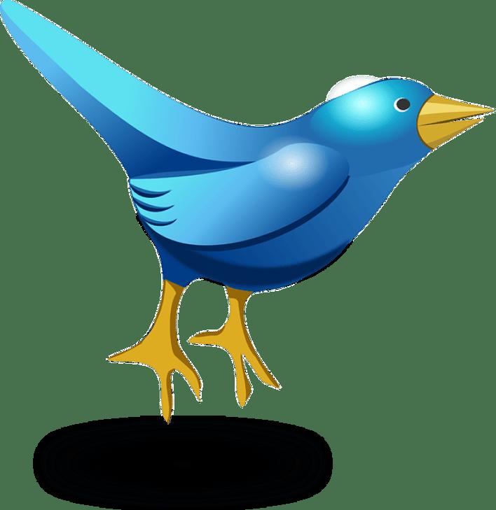 كيف تزيد من فاعليتك على تويتر 3